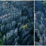 Yuk, Kunjungi Hutan Batu di Tiongkok Ini!