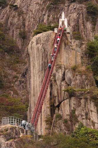 daedunsan-suspension-bridge